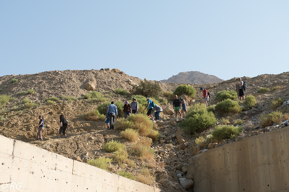 טיול משק לירדן (2) צילום: רונן גל