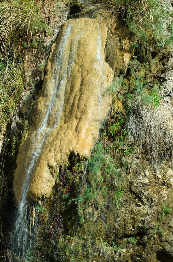 טיול משק לירדן (1) צילום: דב א.