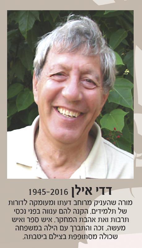 דוד אילן-דדי